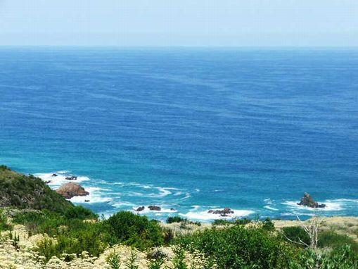 1 hectare vacant land for sale in Pezula Private Estate