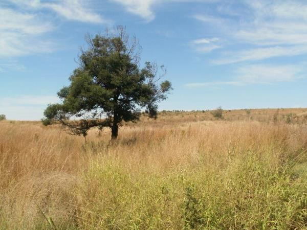 14156 m² vacant land for sale in Middelburg South, Mpumalanga