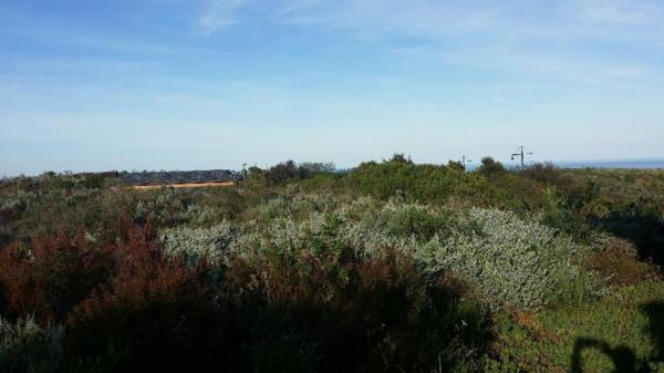 1311 m² vacant land for sale in Pezula Golf Estate