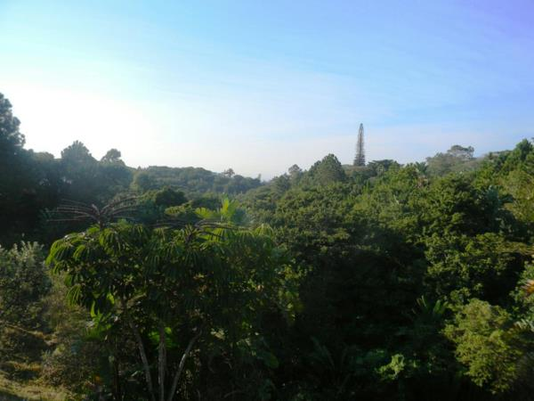 64102 m² residential vacant land for sale in Ramsgate