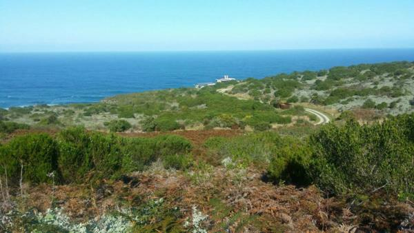 4134 m² residential vacant land for sale in Pezula Private Estate