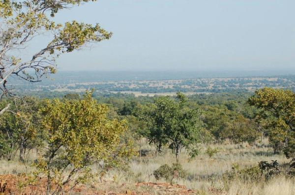 64.29 hectare mixed use farm for sale in Dinokeng