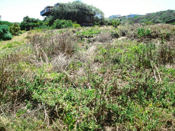 1013 m² vacant land for sale in Outeniqua Strand