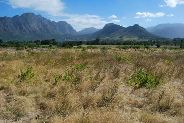 8.3 hectare vacant land for sale in Franschhoek