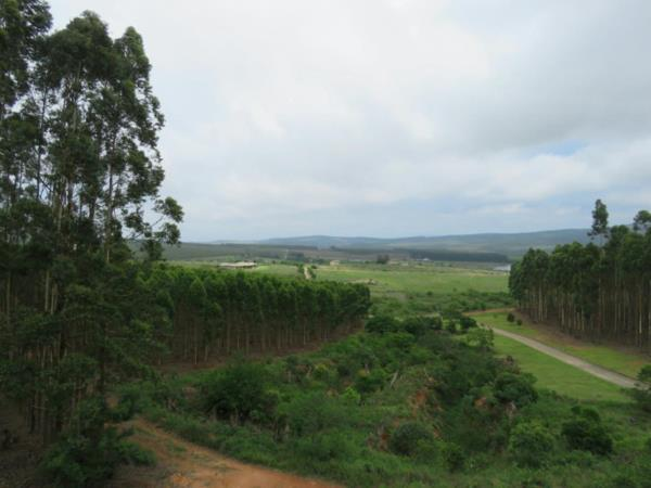 10000 m² vacant land for sale in White River