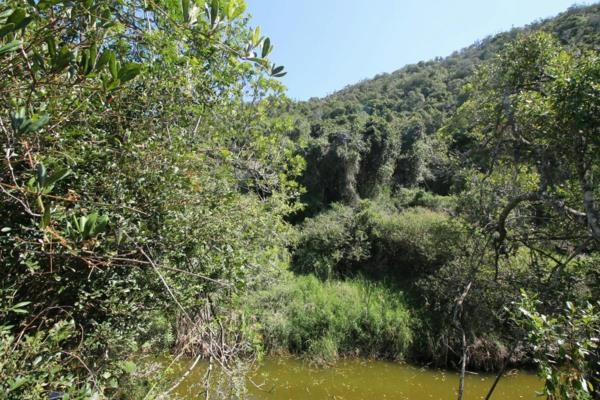 402 hectare game farm for sale in Port Alfred