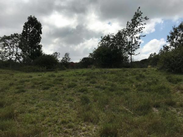 5 acres vacant land for sale in Karen (Kenya)