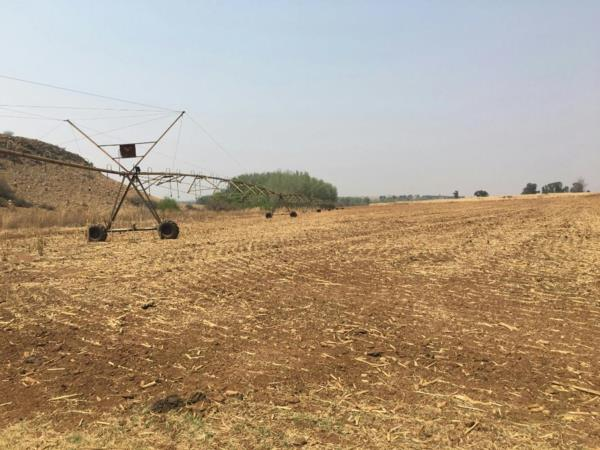 668 hectare crop farm for sale in Bronkhorstspruit
