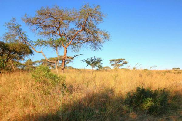 10000 m² residential vacant land for sale in Nelspruit