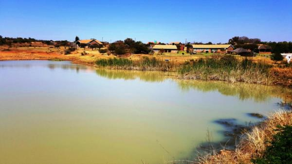 11.49 hectare smallholding for sale in Kameeldrift AH