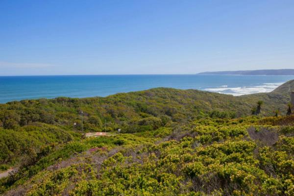 1372 m² vacant land for sale in Wilderness