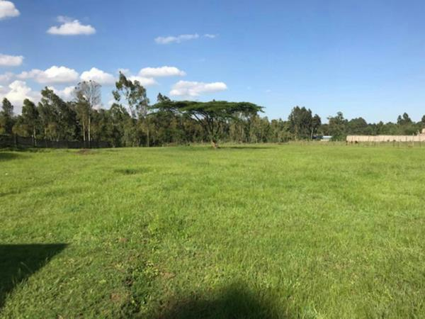 1 acres vacant land for sale in Karen (Kenya)