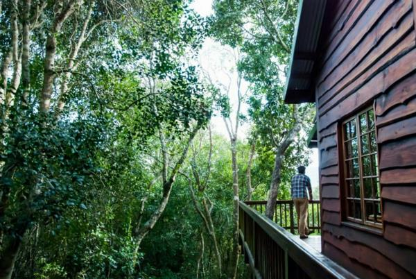 9 guest room guesthouse for sale in The Crags