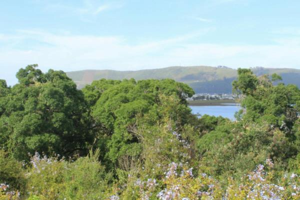 4.4 hectare commercial vacant land for sale in Knysna Central