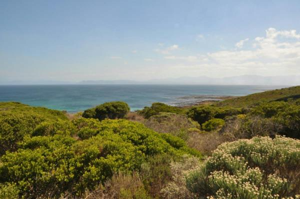 1991 m² residential vacant land for sale in Romansbaai Estate