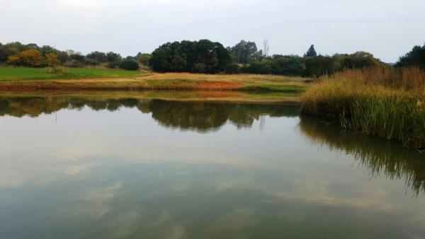 4 hectare smallholding for sale in Zwavelpoort SH