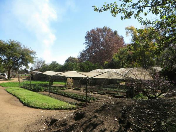 2 hectare smallholding for sale in Brits