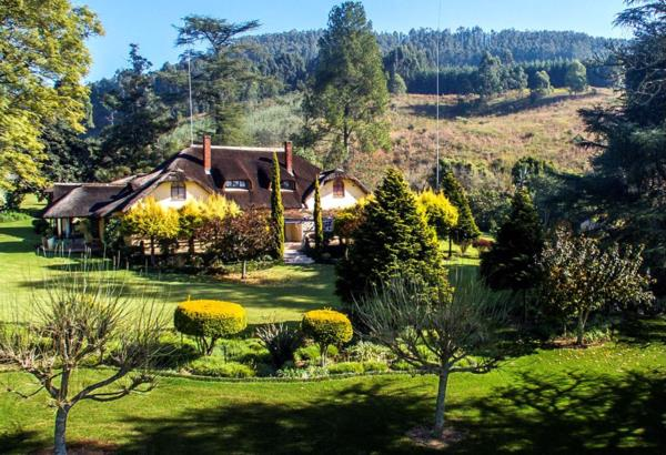 37 hectare lifestyle property for sale in Howick