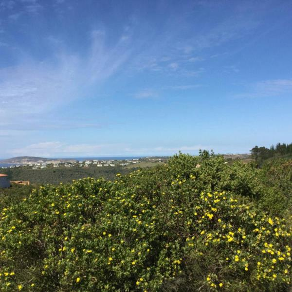 1214 m² residential vacant land for sale in Plettenberg Bay