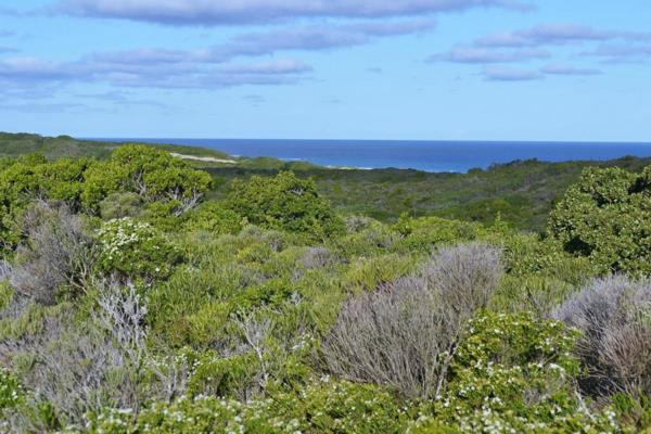 7914 m² vacant land for sale in Cape St Francis