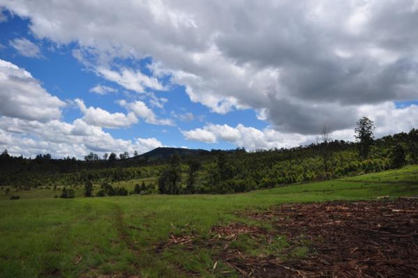 127 hectare farm vacant land for sale in Hilton (KwaZulu-Natal)