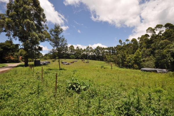 36306 m² vacant land for sale in Hilton Central