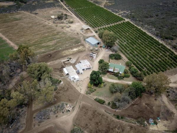 137.23 hectare dairy farm for sale in Barrydale