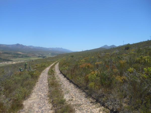 27.4 hectare mixed use farm for sale in Langkloof