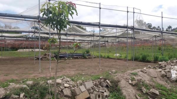 36129 m² crop farm for sale in Umzinto