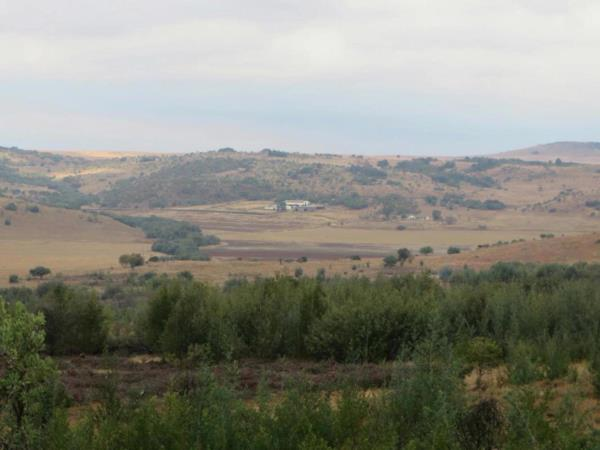 543 hectare mixed use farm for sale in Krugersdorp (Mogale City)