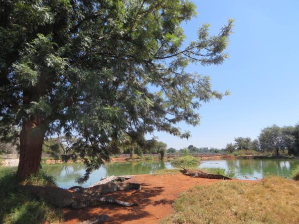 22 hectare mixed use farm for sale in Zoutpansdrift