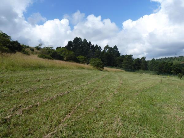 2513 m² residential vacant land for sale in Cotswold Downs Estate