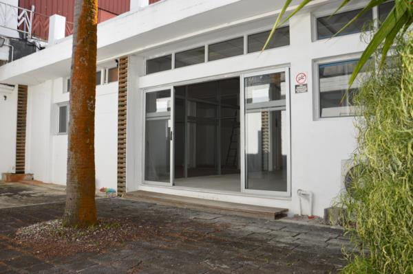 1425 m² commercial industrial property for sale in Phoenix (Mauritius)