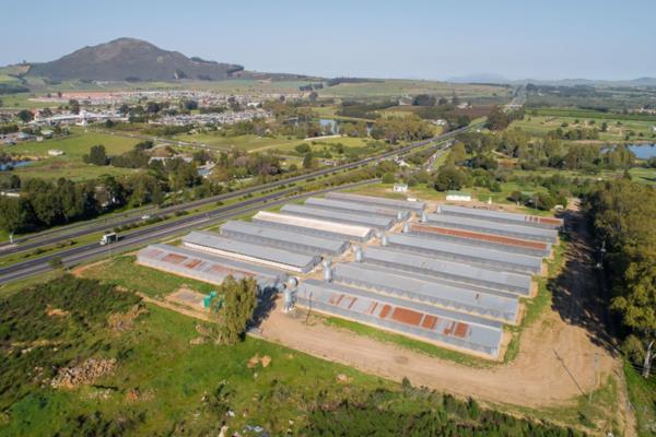 62400 m² poultry farm for sale in Klapmuts
