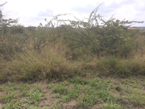 277 m² vacant land for sale in Bendor Park