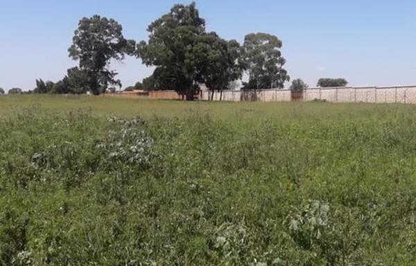 17131 m² vacant land for sale in Delmas