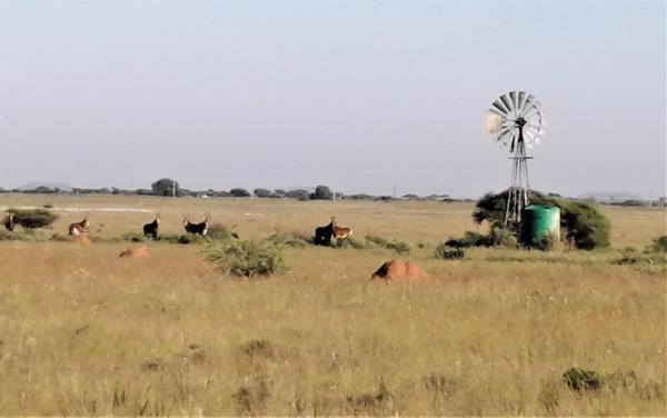 3000 hectare mixed use farm for sale in Kimberley