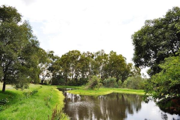 42 hectare mixed use farm for sale in Cullinan (Bronkhorstspruit)