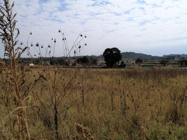 6.63 hectare vacant land for sale in The Grange (Zimbabwe)