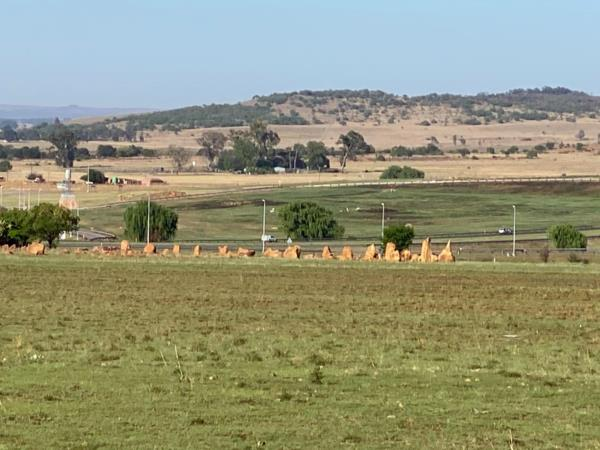 40 hectare farm vacant land for sale in Bronkhorstspruit