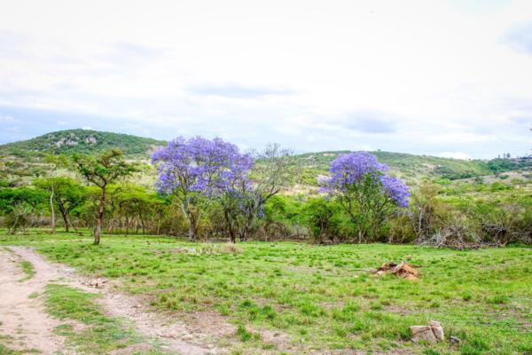 10000 m² residential vacant land for sale in Wild Fig Country Estate