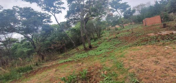 4838 m² vacant land for sale in Borrowdale (Zimbabwe)