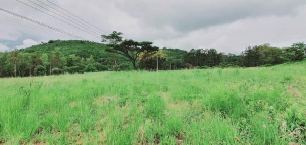 1.9 hectare vacant land for sale in Borrowdale (Zimbabwe)
