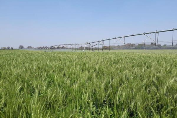 4000 hectare mixed use farm for sale in Lufwanyama, Copperbelt Province (Zambia)