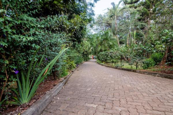 1.85 acres commercial vacant land for sale in Milimani (Kenya)