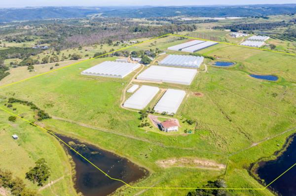 42 hectare mixed use farm for sale in Brakfontein