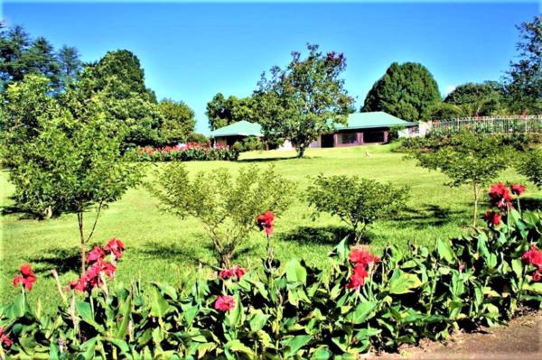 8 hectare smallholding for sale in Merrivale Heights