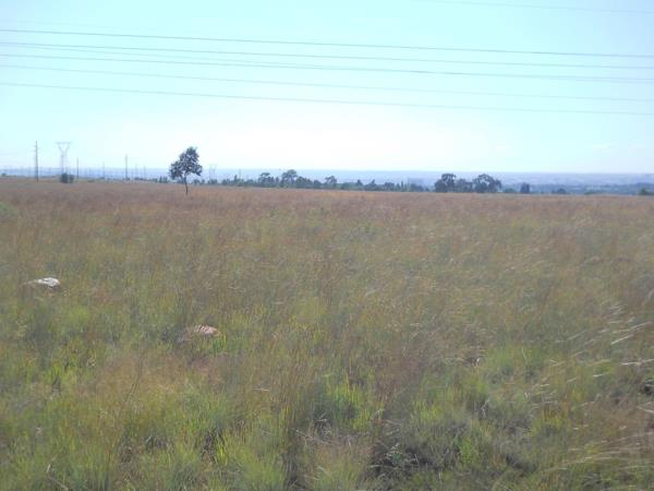 33 hectare vacant land for sale in Gholfsig