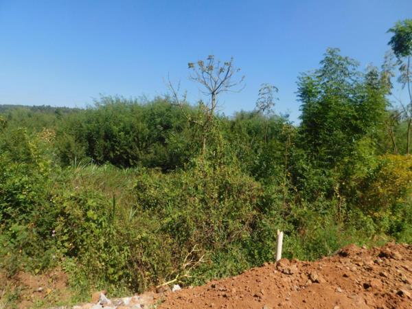4 acres residential vacant land for sale in Karen (Kenya)