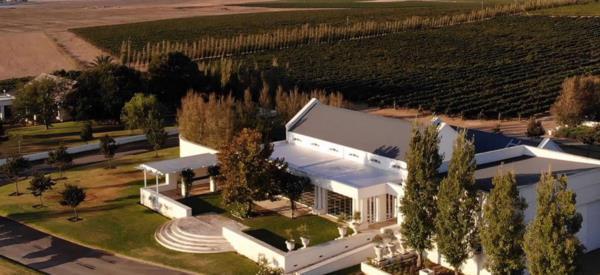 156 hectare wine farm for sale in Durbanville